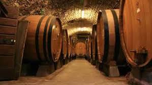 Curso viticultura, enología y cata