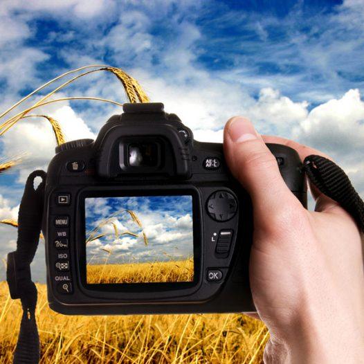 Tratamiento de la fotografía digital. Titulación expedida por la Universidad Rey Juan Carlos, en colaboración con AGRUPACIÓN VÉRTICE