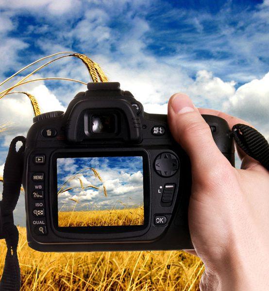 Tratamiento de la fotografía digital.  Acreditación URJC (2 Créditos ECTS)